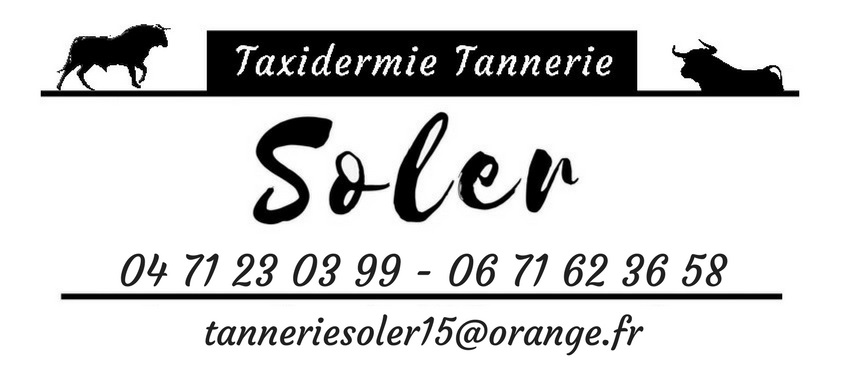 Taxidermie tannerie soler